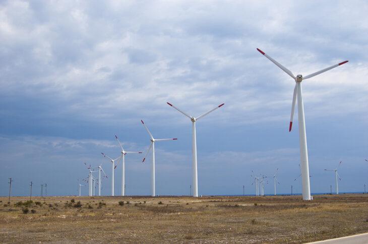 Ритейлеры стали лидерами по строительству солнечных электростанций в России