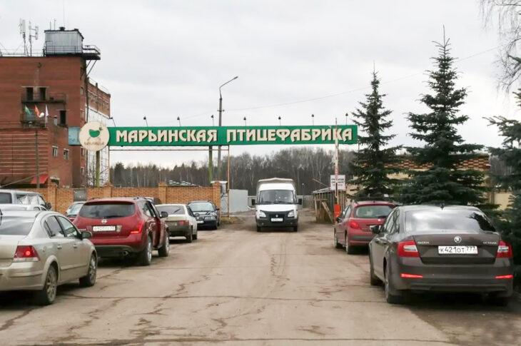 Птицефабрику застроят жильем в Новой Москве