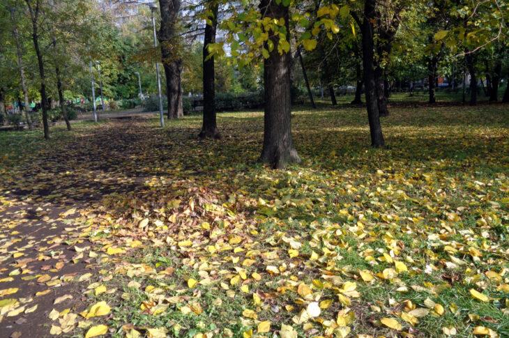 В столице обустроили более 180 гектаров парка «Яуза»